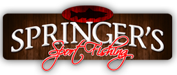 Springer Sport Fishing